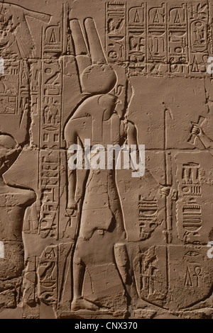 Ancient Egyptian god Horus. Relief in the Great hypostyle hall in the Karnak Temple Complex in Luxor, Egypt. - Stock Photo