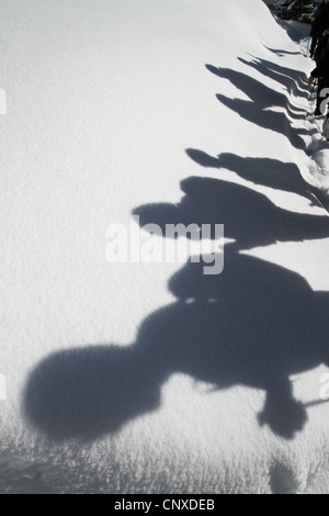 Shadows of hikers against a blanket of snow - Stock Photo