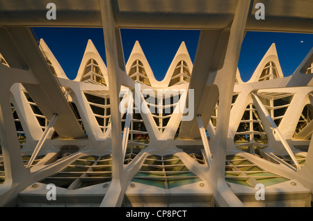 The Museum in the City of Arts and Sciences, facade detail - Stock Photo