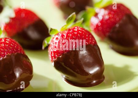 chocolate dipped strawberries - Stockfoto
