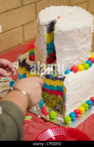Large Child's Birthday Cake Being Cut - Stock Photo