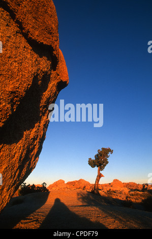 Sunset casts shadows on boulders in Joshua Tree National Park, California, United States of America, North America - Stock Photo