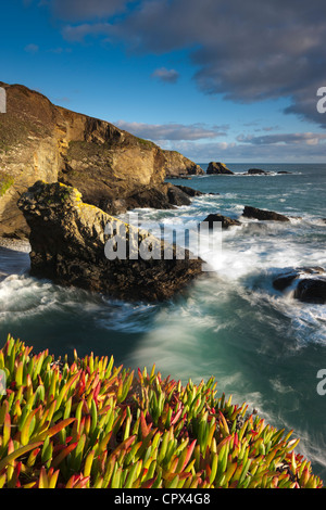 Lizard Point (the most southerly point in mainland Britain), Cornwall, England - Stockfoto
