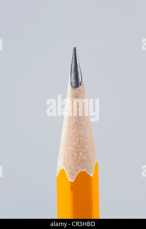 Close up of sharpened pencil tip - Stock Photo