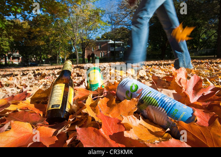 Canada, Quebec Province, Montreal, park in Autumn, environment illustration, wasts - Stock Photo