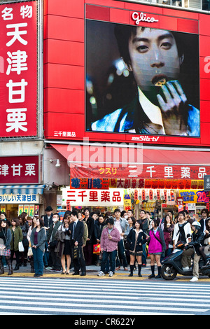 Japan, Honshu Island, Tokyo, Shibuya Crossing, crowd waiting waiting at a zebra crossing - Stock Photo