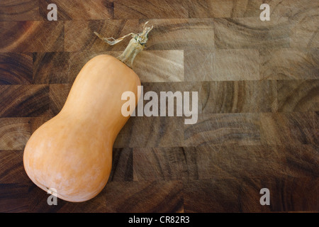 Organic Butternut Squash Freshly Picked from the Garden on Solid Wood Cutting Board - Stockfoto