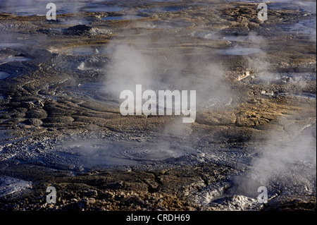 Geysers with water vapour, Uyuni, Bolivia, South America - Stock Photo