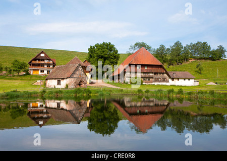 Farm near Hornberg in the Black Forest, Baden-Wuerttemberg, Germany, Europe, PublicGround - Stock Photo