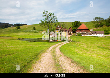Farm near Hornberg in the Black Forest, Baden-Wuerttemberg, Germany, Europe, PublicGround - Stock Photo