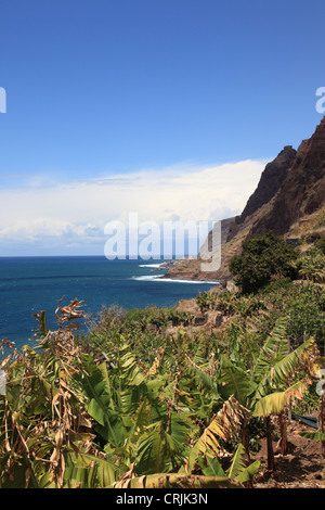 wild Atlantic Ocean looking from Jardim do Mar towards Paul do Mar, Madeira, Portugal, Europe. Photo by Willy Matheisl - Stock Photo