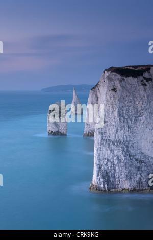 the white cliffs at Studland, Isle of Purbeck, Jurassic Coast, Dorset, England, UK - Stock Photo