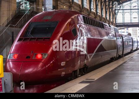 thalys high speed tgv train europe belgium germany rail modern stock photo 24394912 alamy. Black Bedroom Furniture Sets. Home Design Ideas