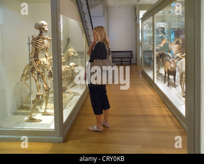 British Museum Natural History Ichthyology