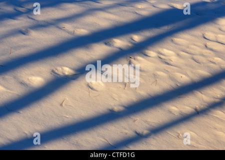 Late evening shadows on snow, Greater Sudbury , Ontario, Canada - Stock Photo