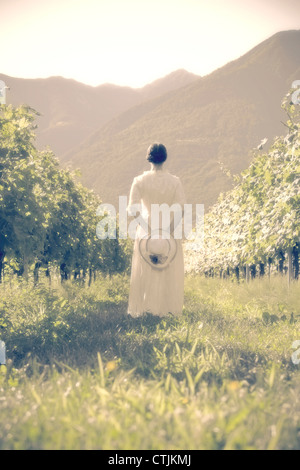 a woman in a white, Victorian dress is walking through vineyards - Stock Photo