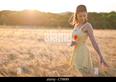 Woman walking through a wheat field, dreamily running her fingers over the wheat ears - Stock Photo
