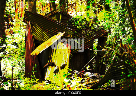 Digitally manipulated image of an abandoned and derelict hut in woodland, Alriston, East Sussex, UK. - Stockfoto