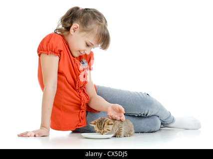 floor cat young striped sitting animals mammals pets house