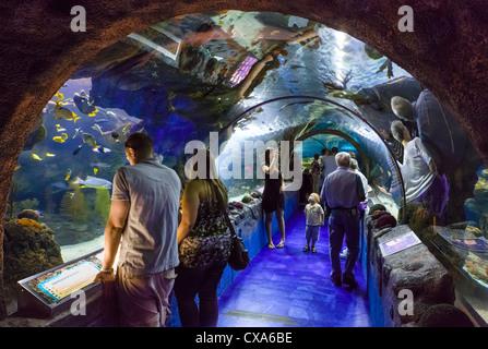 Sea Life Aquarium in the Mall of America, Bloomington ...