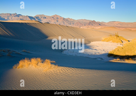 Mesquite Flat Sand Dunes, Death Valley National Park, California, United States of America, North America - Stockfoto