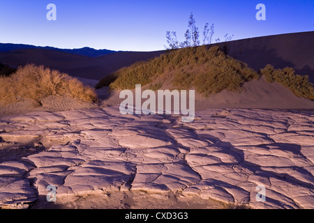 Dried mud in the Mesquite Flat Sand Dunes, Death Valley National Park, California, United States of America, North - Stockfoto