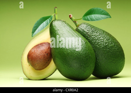 Avocado isolated on a green background. - Stock Photo