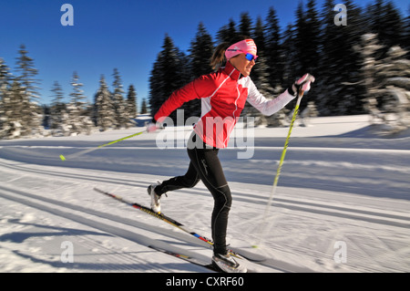 Evi Sachenbacher-Stehle cross-country skiing, Hemmersuppenalm alp, Reit im Winkl, Chiemgau, Bavaria, Germany, Europe - Stock Photo