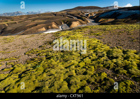Moss and rhyolite mountains covered with ash and snow on the Laugavegur hiking trail, Landmannalaugar Hrafntinnusker - Stock Photo