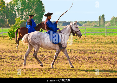 Hungary, Kalocsa, Csikos Hungarian horse riders, demonstrating their prowess with a whip - Stock Photo