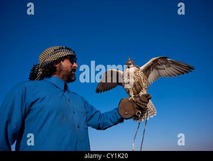 Falconry In Sakakah Area, Saudi Arabia - Stockfoto
