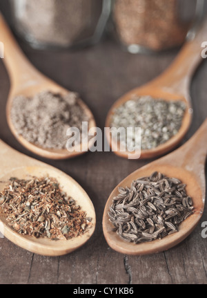 various spices in wooden spoons,close up - Stock Photo
