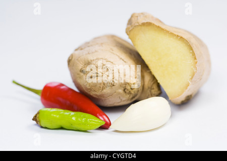 A selection of fresh culinary seasonings against a white background. - Stockfoto
