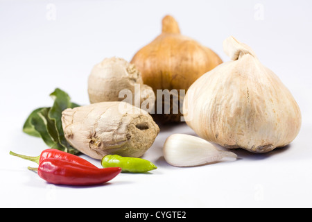 A selection of fresh and dried culinary herbs and spices against a white background. - Stock Photo