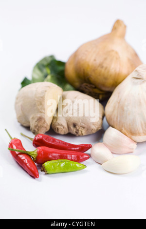 A selection of fresh and dried culinary herbs and spices against a white background. - Stockfoto