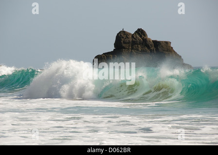 Breaking waves and birds sitting on a rock, Porthchapel beach, Cornwall, England, UK - Stock Photo