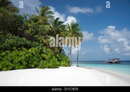 Mirihi Island Resort South Ari Atoll Maldives