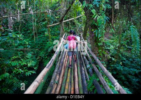 Bamboo bridge in the interior leading to Millennium cave, Island of Espiritu Santo, Vanuatu, South Pacific, Pacific - Stock Photo