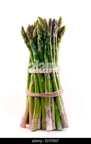 Large sheaf of asparagus standing upright and isolated on a pure white background. - Stock Photo