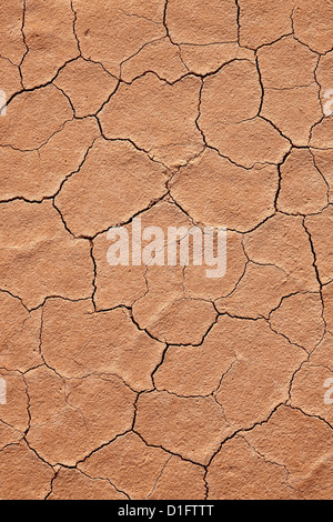Cracked red rock soil, Grand Staircase-Escalante National Monument, Utah, United States of America, North America - Stock Photo