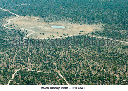 Aerial view of airstrip, road and small waterhole, Etosha National Park, Namibia, Africa - Stock Photo