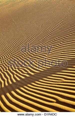 Morocco, M'Hamid, Erg Chigaga sand dunes. Sahara desert. Detail ripple-marks. - Stock Photo