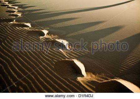 Morocco, M'Hamid, Erg Chigaga sand dunes. Sahara desert. Detail ripple-marks. Footsteps. - Stockfoto