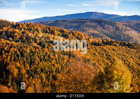Babia Gora, beskid Zywiecki, Beskidy mountains, Poland - Stockfoto