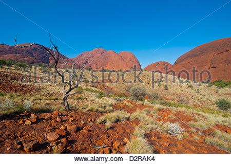 The Olgas (Kata Tjuta), Uluru-Kata Tjuta National Park, UNESCO World Heritage Site, Northern Territory, Australia, - Stock Photo