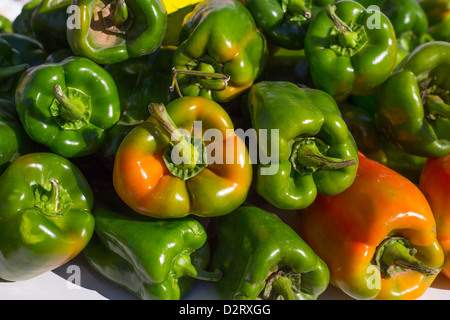 green peppers stacked in a row at market vegetables food - Stock Photo