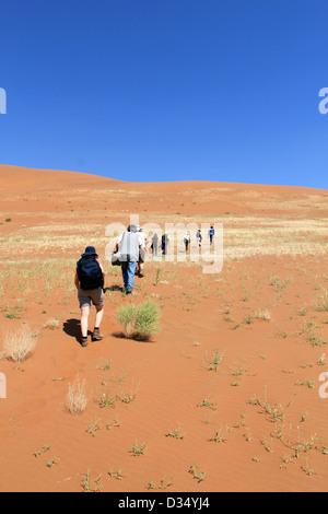 Trekking a sand dune in the Namib Desert, Sossusvlei, Namibia  - Stockfoto