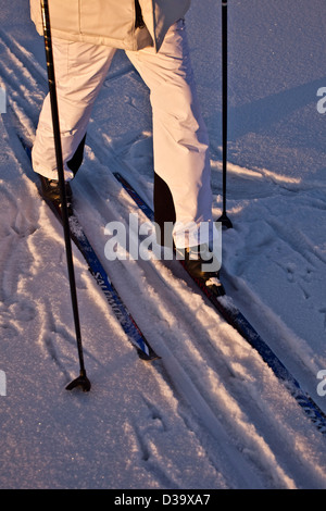 Man cross country skiing, Lapland - Stock Photo
