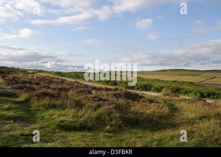 A path over Curbar edge  in the Derbyshire Peak district - Stock Photo