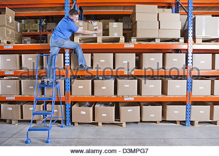 Worker standing on shelf and reaching for cardboard box in distribution warehouse - Stock Photo
